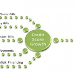 Learn What Services You Purchase Run Credit Checks